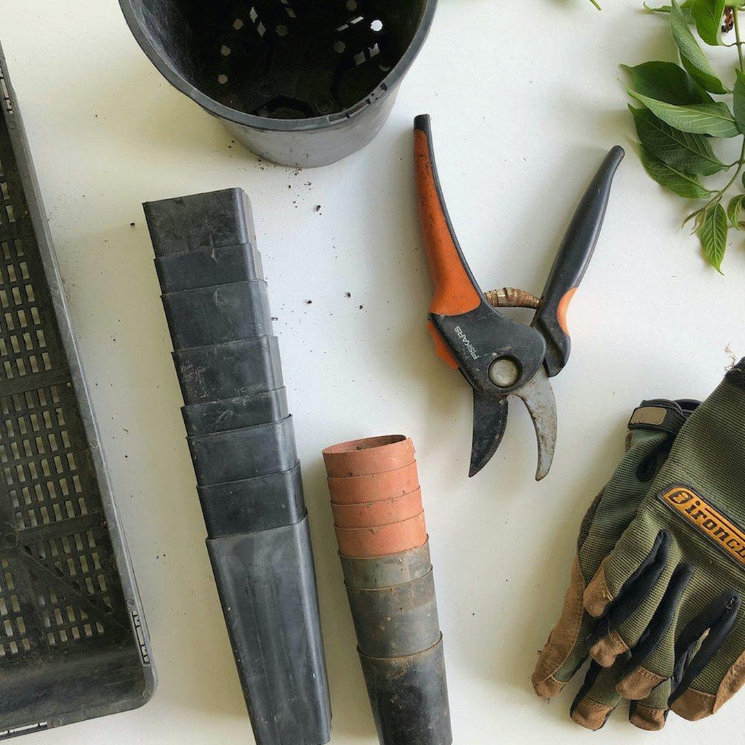 gardener-service-in-baku